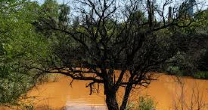 В Золотом течет «оранжевая река» из шахтных вод
