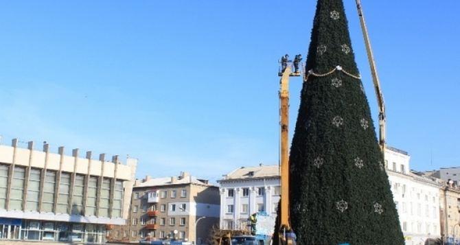 В Луганске главную елку на Театральной площади начали украшать