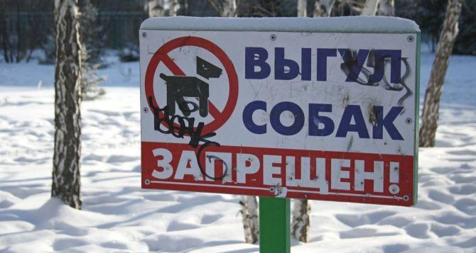В Луганске ввели запрет на выгул животных парках, скверах и городских зеленых зонах