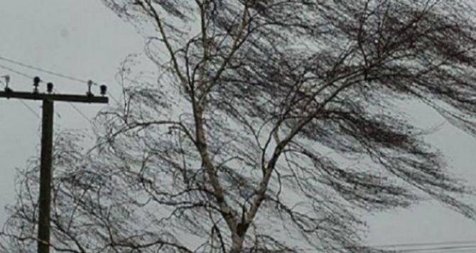 В Луганске ожидается днем усиление ветра до 72 км в час