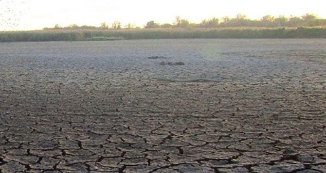 В Луганске прогнозируют дальнейшее обмеление водоемов будущим летом