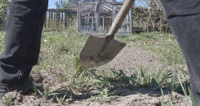 Житель Донбасса подорвался на взрывном устройстве, когда сажал картошку на своем огороде