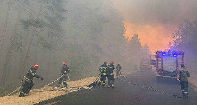 Никаких пожаров летом 2021! —Луганской и Донецкой ОГА поручили обеспечить безопасность в летний период