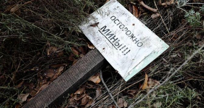На берегу Северского Донца подорвались сразу три мирных жителя