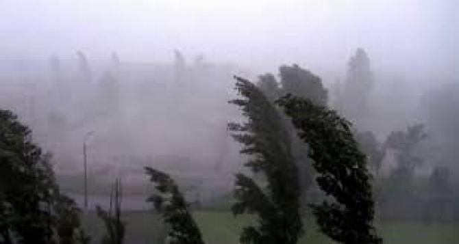 Утром и днем 12июня в Луганске гроза и шквалистое усиление ветра до 70 км в час. Объявлено штормовое предупреждение