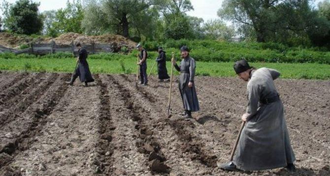 Что можно сажать на огороде после праздника Святой Троицы?