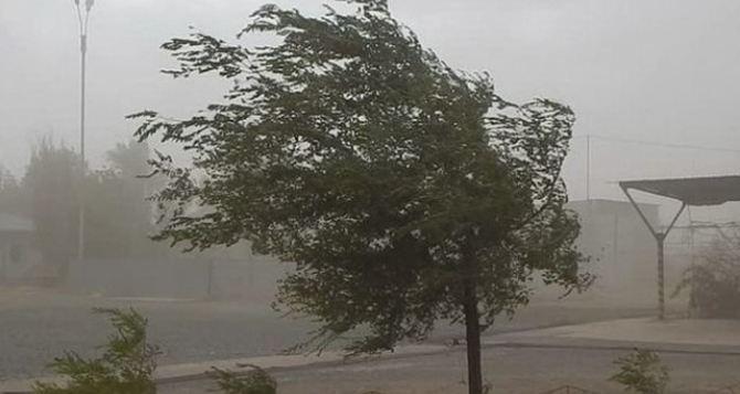 Штормовой ветер и грозы на Луганщине 5июля