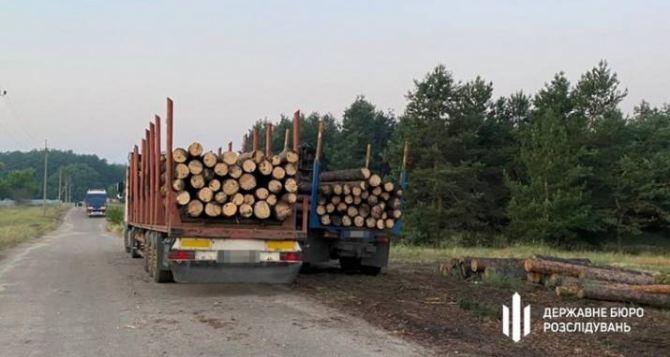 ГБР разоблачило схему по продаже «сгоревшей» на пожарах в Луганской области древесины на миллионы гривен. ФОТО. ВИДЕО