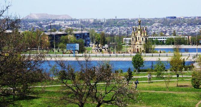 В городском пруду Алчевска обнаружили труп ребёнка