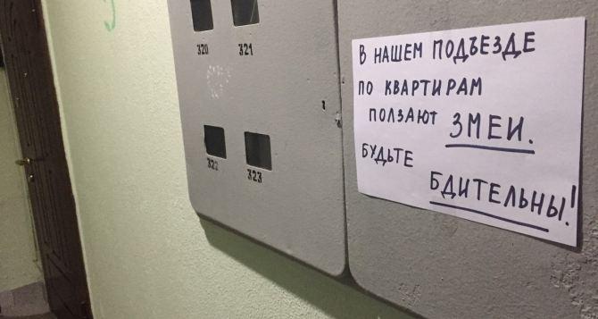 В Луганске продолжается нашествие змей. Что делать
