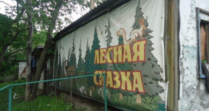 В Алчевске сожгли «сказочное» кафе с зоопарком