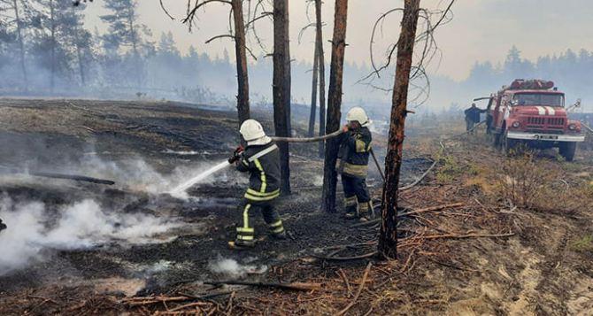 Жителей Донбасса предупреждают о чрезвычайной пожарной опасности и последствиях