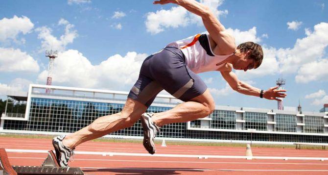 Букмекерская контора Winline: легальные и доступные ставки на спорт