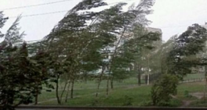 В Луганске дождь с градом, гроза и шквалистый штормовой ветер свыше 80 км в час. МЧС срочно объявило штормовое предупреждение