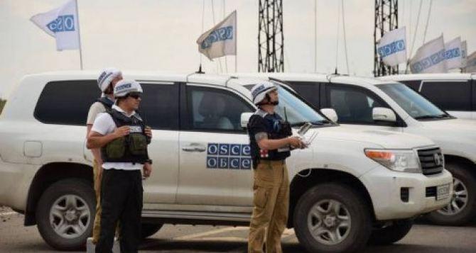 Пенсионерка остановила полеты беспилотника и заставила ретироваться патруль ОБСЕ