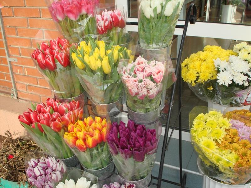 Цены на цветы 8 марта 2014 где в подольске можно купить синие розы