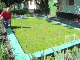 К открытию Евро-2012 луганчанин вырастил миниатюрный футбольный газон