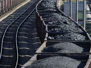 Весенний гламур угольного Кувейта