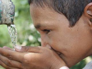 Как вы думаете, безопасно ли пить воду из луганских бюветов? - Опрос