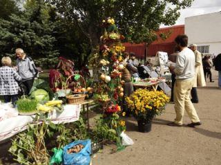Яркими красками пасмурный день разбавил «Праздник урожая» в Луганске (фото)