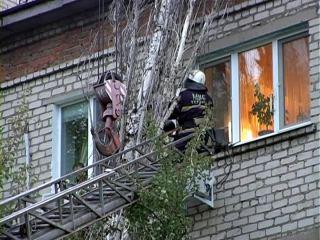 На луганскую многоэтажку рухнуло 18-метровое дерево (фото, видео)
