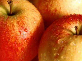 Луганскими яблоками накормят всю Украину