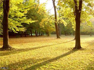 До конца октября в Украине будет тепло и сухо
