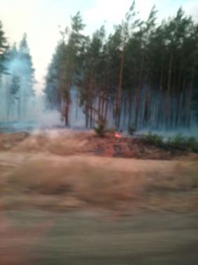 В Луганской области пожары не потушены и продолжают гибнуть люди