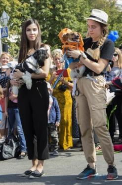 Креативные псы и собаки дефилировали в центре Луганска. ФОТО