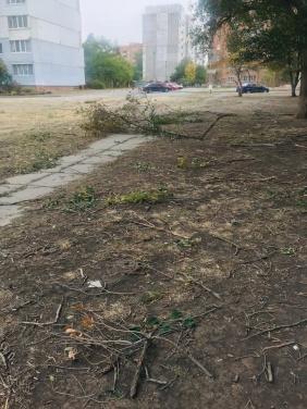 Жители Луганска публикуют ФОТО последствий шторма пронесшегося по городу
